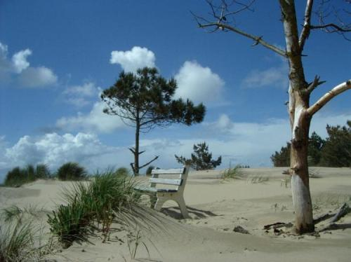 massage naturiste gap Charente-Maritime