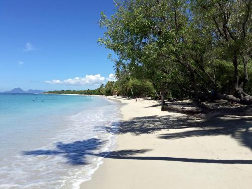 massage naturiste bayonne Martinique