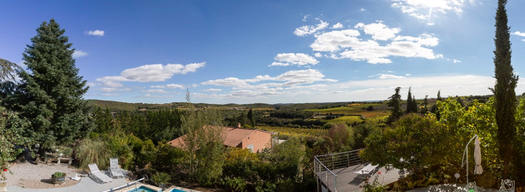 Views over the Vineyards